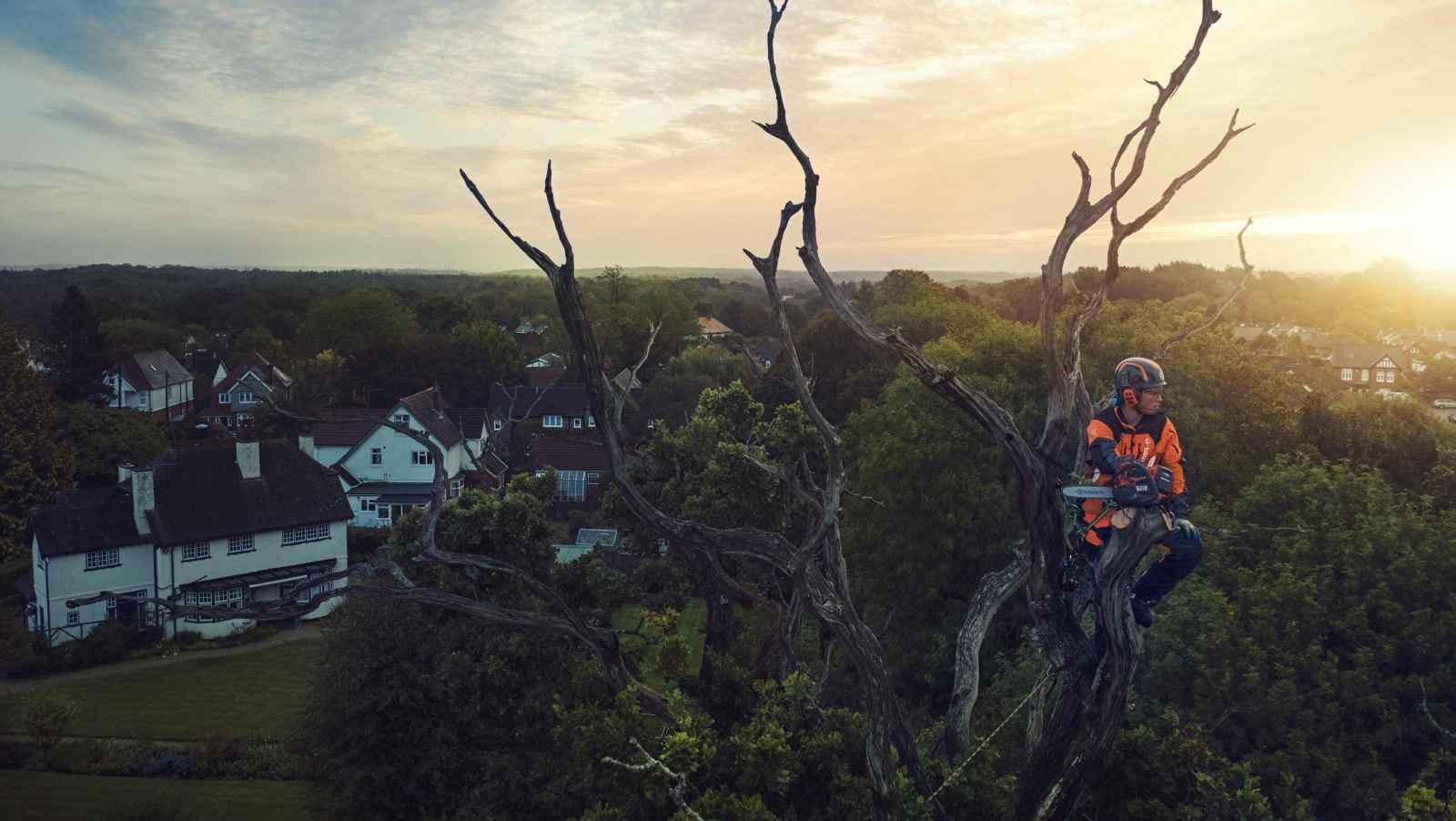 Arborist echipat cu Husqvarna se odihneste in copac